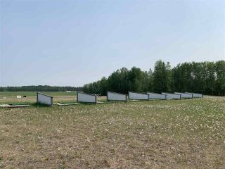Photo 18: 10081 Croswell Road: Rural Lesser Slave River M.D. Business with Property for sale : MLS®# E4151780