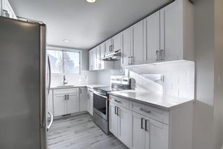 Photo 6: 1419 31 Street SW in Calgary: Shaganappi Detached for sale : MLS®# A1063406