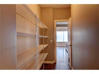 Photo 12: 53 WALDEN Close SE in Calgary: Walden House for sale : MLS®# C4099955