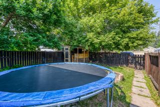Photo 25: 5258 19 Avenue NW in Calgary: Montgomery Semi Detached for sale : MLS®# A1131802