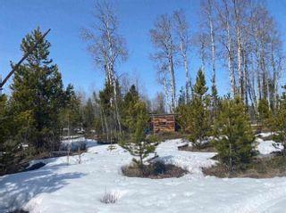 Photo 4: DL 857 BIG CREEK Road in Williams Lake: Williams Lake - Rural North Land for sale (Williams Lake (Zone 27))  : MLS®# R2607580