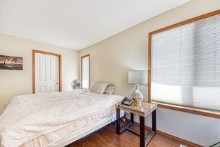 Photo 25: 23 Citadel Meadow Grove NW in Calgary: Citadel Detached for sale : MLS®# A1149022