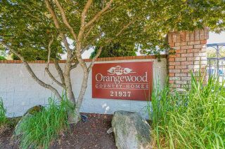 """Main Photo: 1315 21937 48 Avenue in Langley: Murrayville Townhouse for sale in """"Orangewood"""" : MLS®# R2607237"""