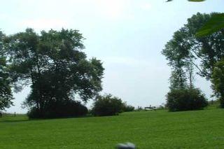 Photo 7: 174 Greyabbey Trail in Toronto: House (Bungalow) for lease (E10: TORONTO)  : MLS®# E1933410