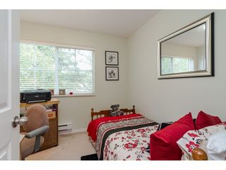 """Photo 21: 3 23575 119 Avenue in Maple Ridge: Cottonwood MR Townhouse for sale in """"HOLLYHOCK"""" : MLS®# R2490627"""
