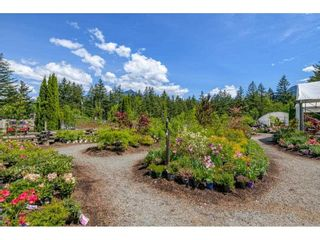 Photo 36: 21400 TRANS CANADA Highway in Hope: Hope Center House for sale : MLS®# R2579702