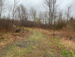Main Photo: Pictou Landing Road in Pictou Landing: 108-Rural Pictou County Vacant Land for sale (Northern Region)  : MLS®# 202110841