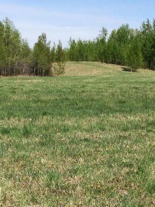 Photo 3: Twp 510 RR 33: Rural Leduc County Rural Land/Vacant Lot for sale : MLS®# E4239253
