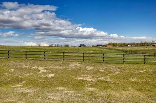Photo 13: 286006 Ridgeview Way E: Rural Foothills County Residential Land for sale : MLS®# A1108192