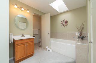 Photo 33: 14717 43A Avenue in Edmonton: Zone 14 House for sale : MLS®# E4246665