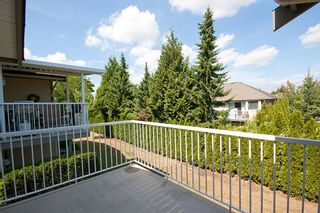 "Photo 24: 6 3635 BLUE JAY Street in Abbotsford: Abbotsford West Townhouse for sale in ""COUNTRY RIDGE"" : MLS®# F1448866"