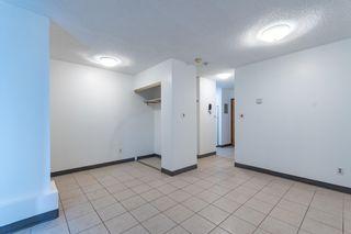 Photo 8:  in Edmonton: Zone 02 Condo for sale : MLS®# E4246424