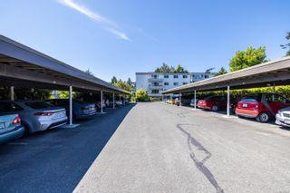 Photo 25: 305 190 W Gorge Rd in Saanich: SW Gorge Condo for sale (Saanich West)  : MLS®# 882812