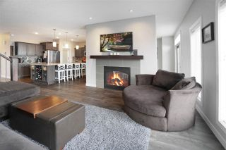Photo 16: 6405 ELSTON Loop in Edmonton: Zone 57 House for sale : MLS®# E4224899
