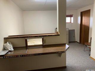 Photo 26: Risling Acreage in Tramping Lake: Residential for sale (Tramping Lake Rm No. 380)  : MLS®# SK864608