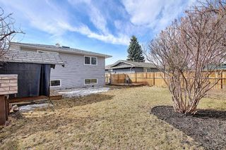Photo 38: 315 Banister Drive: Okotoks Detached for sale : MLS®# A1089358