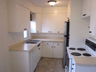 Photo 5: 12207 107 Street in Edmonton: Zone 08 House for sale : MLS®# E4261205