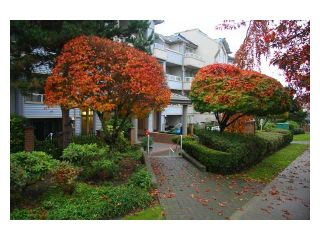 """Photo 1: 107 7326 ANTRIM Avenue in Burnaby: Metrotown Condo for sale in """"SOVEREIGN MANOR"""" (Burnaby South)  : MLS®# V857785"""