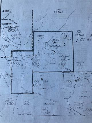 Photo 25: DL3592 & DL4084 1020 Forest Service Road in Seymour Arm: syemour arm Land Only for sale (shuswap)  : MLS®# 10241424