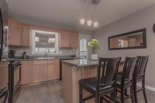 Photo 12: 38 Edelweiss Crescent in Niverville: R07 Residential for sale : MLS®# 202112195