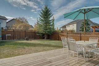 Photo 36: 19 Chapman Close SE in Calgary: Chaparral Detached for sale : MLS®# A1053108