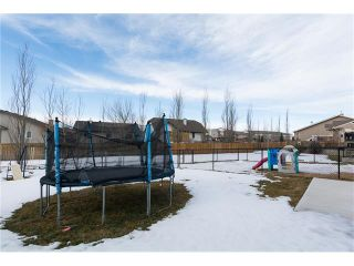 Photo 20: 112 Camara Court: Strathmore House for sale : MLS®# C4048908