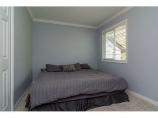 Photo 29: 18253 57A Avenue in Surrey: Cloverdale BC House for sale (Cloverdale)  : MLS®# R2163180