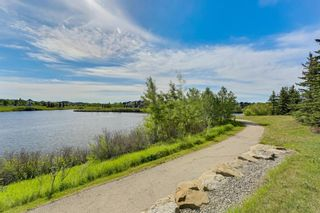 Photo 50: 233 Elgin Manor SE in Calgary: McKenzie Towne Detached for sale : MLS®# A1138231