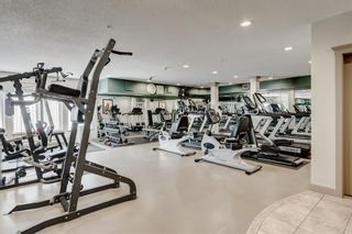 Photo 22: 103 30 Discovery Ridge Close SW in Calgary: Discovery Ridge Apartment for sale : MLS®# A1144309