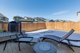 Photo 19: 29 Nolanfield Road NW in Calgary: Nolan Hill Detached for sale : MLS®# A1080234