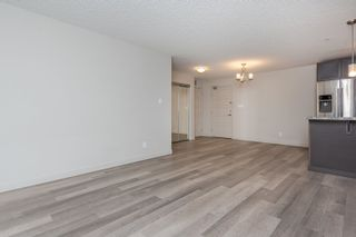 Photo 8: 256 7805 71 Street in Edmonton: Zone 17 Condo for sale : MLS®# E4266039