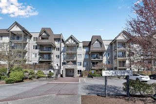 """Photo 22: 419 12083 92A Avenue in Surrey: Queen Mary Park Surrey Condo for sale in """"The Tamaron"""" : MLS®# R2601087"""