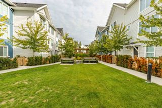 """Photo 34: 6 20451 84 Avenue in Langley: Willoughby Heights Townhouse for sale in """"The Walden"""" : MLS®# R2616635"""