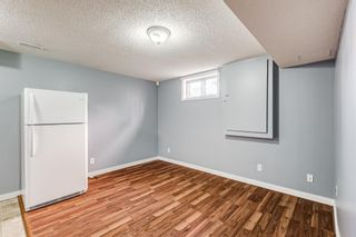 Photo 26: 18 Erin Meadow Close SE in Calgary: Erin Woods Detached for sale : MLS®# A1143099
