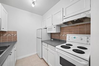 Photo 18: 159 200 WESTHILL Place in Port Moody: College Park PM Condo for sale : MLS®# R2600780