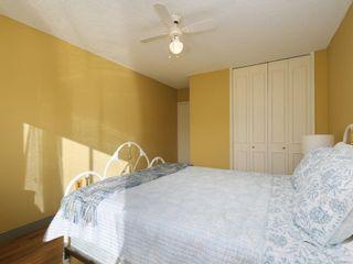 Photo 13: 215 777 Cook St in : Vi Downtown Condo for sale (Victoria)  : MLS®# 867586