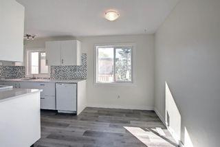 Photo 25: 3036 Doverville Crescent SE in Calgary: Dover Semi Detached for sale : MLS®# A1148570