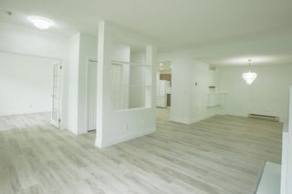 Photo 1: 113 7500 ABERCROMBIE DRIVE in Richmond: Brighouse South Condo for sale : MLS®# R2610665