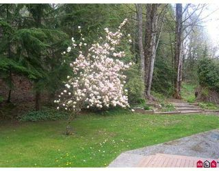 "Photo 9: 36241 DAWSON Road in Abbotsford: Abbotsford East House for sale in ""Straiton/Sumas Mtn"" : MLS®# F2701446"