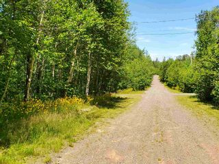 Photo 7: 8 Shady Lane in Loch Broom: 108-Rural Pictou County Vacant Land for sale (Northern Region)  : MLS®# 202117520