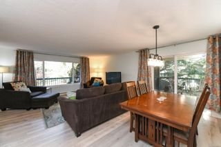 Photo 14: 2311 Strathcona Cres in : CV Comox (Town of) House for sale (Comox Valley)  : MLS®# 858803