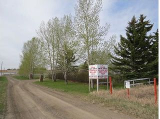 Photo 4: 2727 92 Street SE: Calgary Detached for sale : MLS®# A1084351