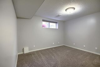 Photo 39: 227 Prestwick Manor SE in Calgary: McKenzie Towne Detached for sale : MLS®# A1059017