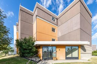 Photo 1: 401C 4455 Greenview Drive NE in Calgary: Greenview Apartment for sale : MLS®# A1052674