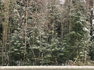 """Photo 2: 5867 CHIEF LAKE Road in Prince George: North Kelly Land for sale in """"CHIEF LAKE RD"""" (PG City North (Zone 73))  : MLS®# R2466938"""