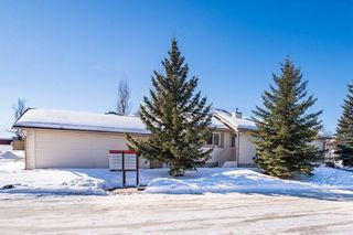 Photo 20: 256 SHEEP RIVER Lane: Okotoks House for sale : MLS®# C4170641