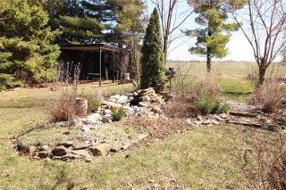 Photo 8: 52 Robinson Avenue in Kawartha Lakes: Rural Eldon House (Bungalow) for sale : MLS®# X3472144
