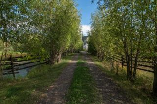 Photo 47: 51071 223: Rural Strathcona County House for sale : MLS®# E4261983