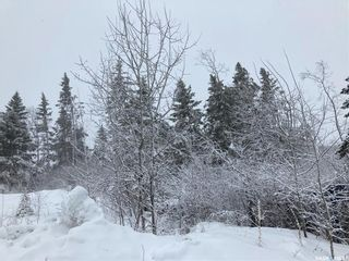 Photo 14: LOT AT MORIN LAKE in Canwood: Lot/Land for sale (Canwood Rm No. 494)  : MLS®# SK846769