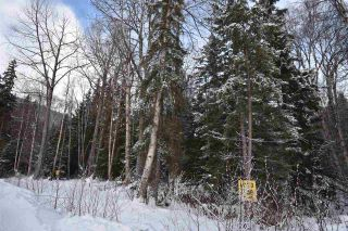 """Photo 14: 3 3000 DAHLIE Road in Smithers: Smithers - Rural Land for sale in """"Mountain Gateway Estates"""" (Smithers And Area (Zone 54))  : MLS®# R2280165"""